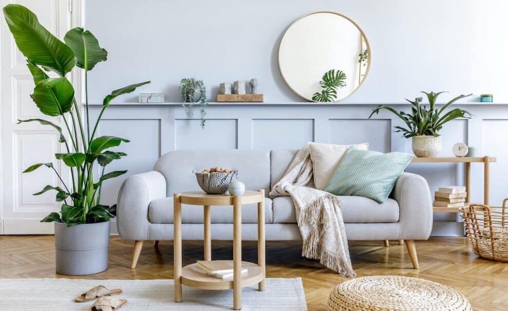 ventilar hogar con plantas